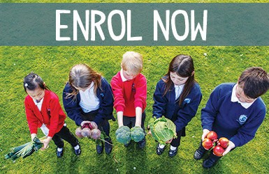 Enrol your School
