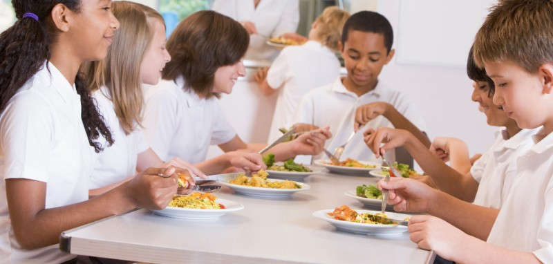School food plan alliance